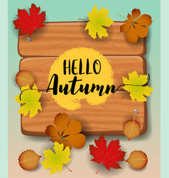 hello autumn banner paper colorful tree leaf vector image
