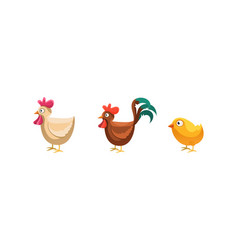 Rooster hen and chicken funny cartoon farm vector