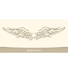 Sketch of wings on white background vector