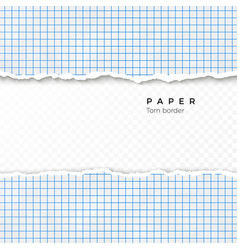 torn edge squared paper torn piece squared vector image