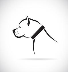 images of Pitbull dog vector image
