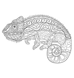 adult coloring bookpage a cute chameleon image vector image