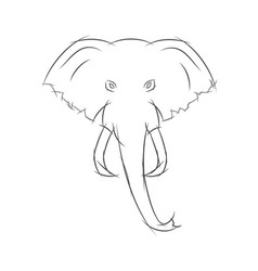 elephant head front view this sketch may be used vector image