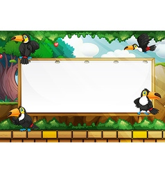 Frame template with toucans flying vector