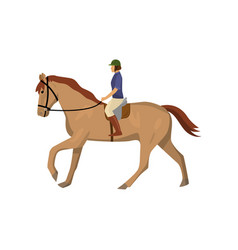 Horseracing woman in jockey uniform and green vector