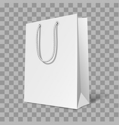 mockup of bag vector image