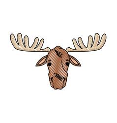 moose antler animal natural wildlife image vector image
