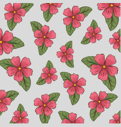 nature flowers plants with leaves background vector image