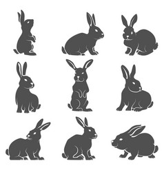Set of rabbit icons isolated on white background vector
