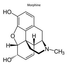 Skeletal formula chemical molecule vector