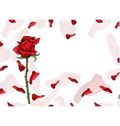 valentine day love postcard single red rose flower vector image