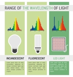 Infographic different lamps with wavelength vector