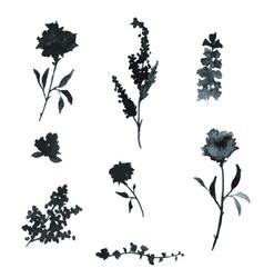 black watercolor floral elements vector image