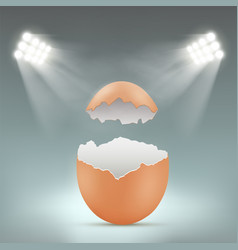 broken empty blank chicken egg with spotlights vector image