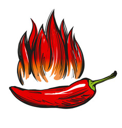 chili pepper and flame abstract symbol sign vector image