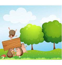 Hedgehogs and wooden sign in the field vector