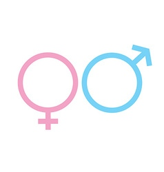 Male and female gender signs sexual symbols vector