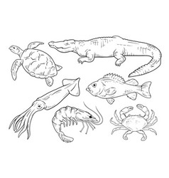 Sea animals line set vector