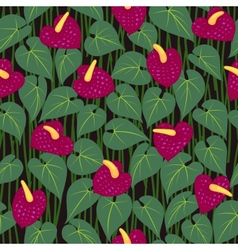 seamless anturium flower pattern background vector image