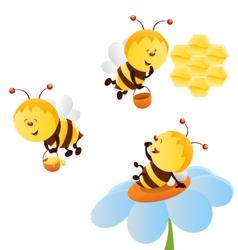 bee set vector image vector image