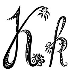 letter K k vector image vector image