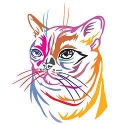 Colorful decorative portrait burmese cat vector