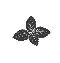 Mint glyph icon vector