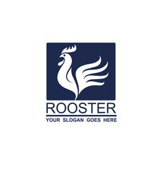 rooster icon design vector image
