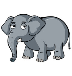 Sad elephant on white background vector