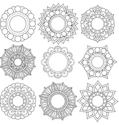 set of different flowers and floral patterns vector image