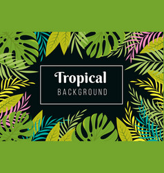 tropical background rainforest palm tree leaves vector image