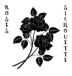 Flowers Bouquet Roses Silhouette vector image vector image