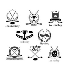 ice hockey club or tournament award symbols vector image