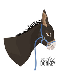 Adorable donkey head with black mane in blue vector