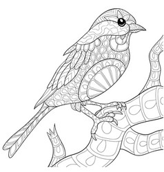 Adult coloring bookpage a cute bird on the brunch vector