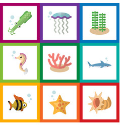 Flat icon sea set of medusa algae hippocampus vector