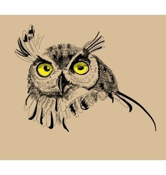 Owl drawing vector