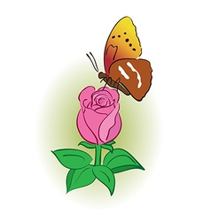 rose with bright butterfly vector image