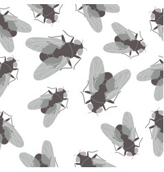 Seamless pattern with flies on white background vector