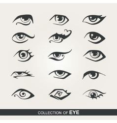 Stylized set of eyes vector image