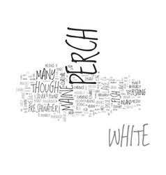 white perch text word cloud concept vector image vector image
