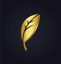 gold leaf organic logo vector image