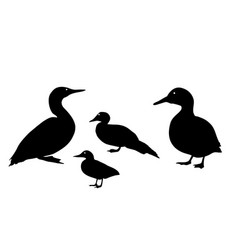 black silhouette a duck on white background vector image