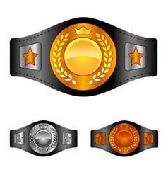 champion belt box award sport icon flat web sign vector image