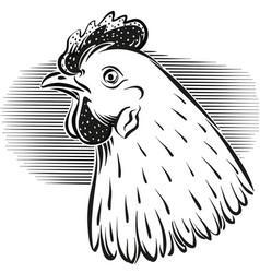 Chicken head vector