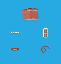flat icon food set of kielbasa beef bratwurst vector image