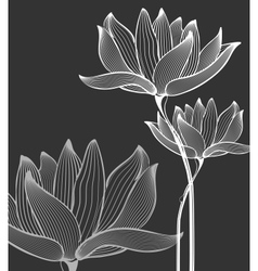 Flowers Background over black vector image
