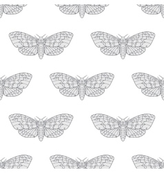 Hand drawn hawk moth seamless pattern vector