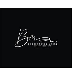 Letter bm signature logo template vector