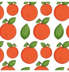 Orange fruit background vector